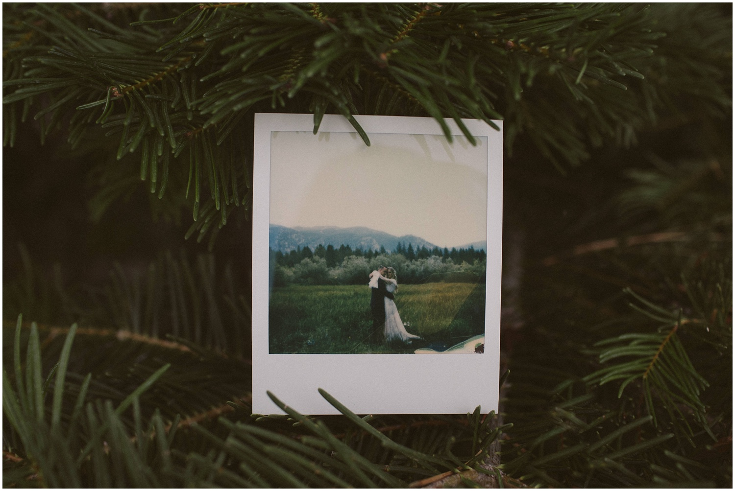 Lindsay and Bret South Lake Tahoe Bohemian Wedding Polaroid